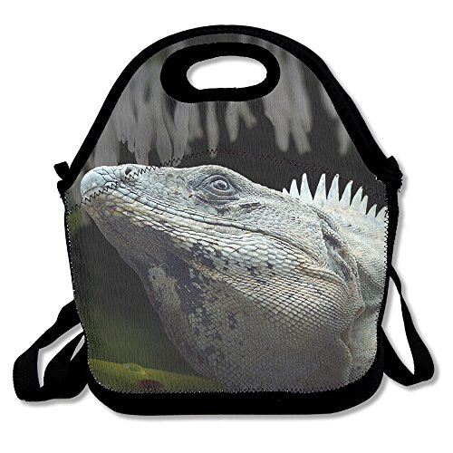 Cold-blooded Iguana Animal Lunch Box Tote Bag Cool